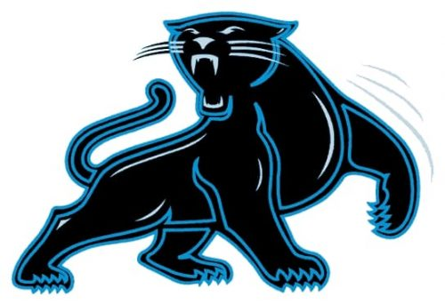 Carolina Panthers symbol