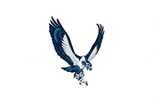 Seattle Seahawks Alternate Logo